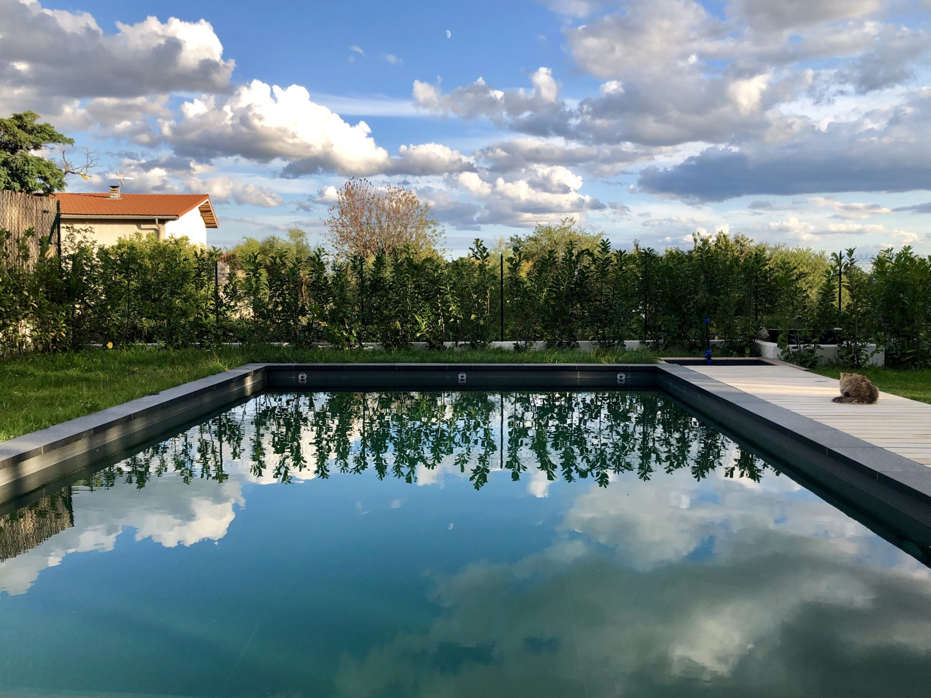 asb-architecture-maison-contemporaine-toiture-terrasse-piscine bassin