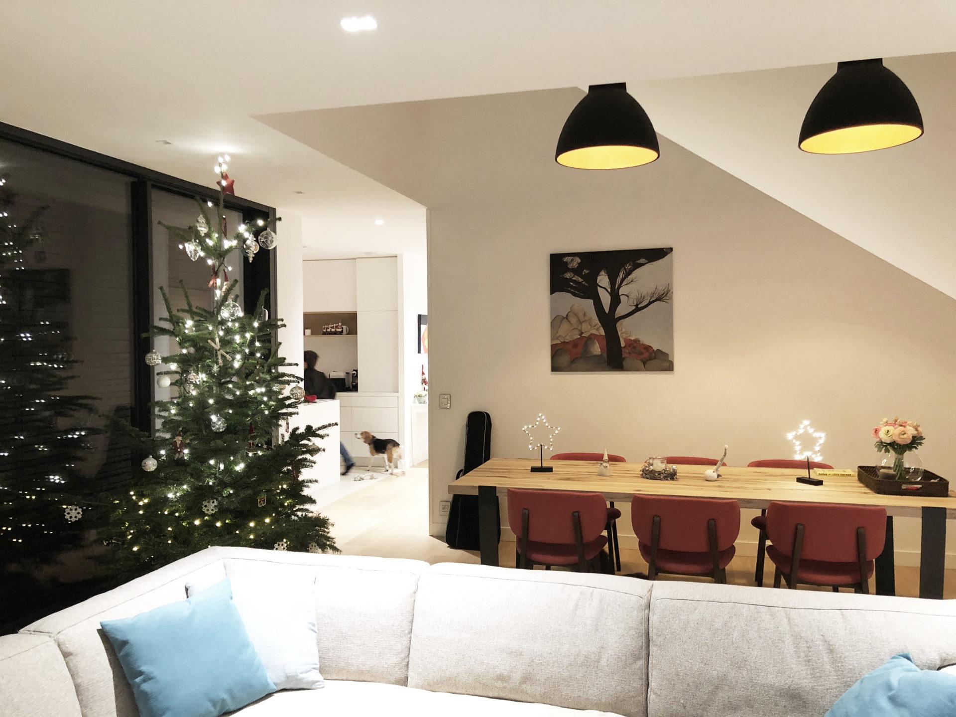 asb-architecture-maison-contemporaine-toiture-terrasse-séjour ouvert